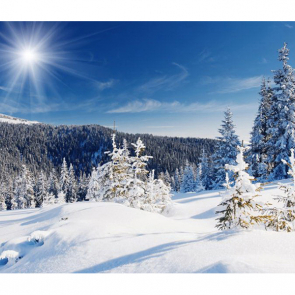 Зима 01274