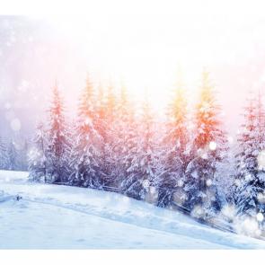 Зима 01348