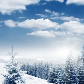 Зима 01350