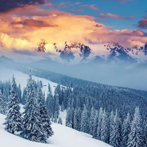 Зима 01361
