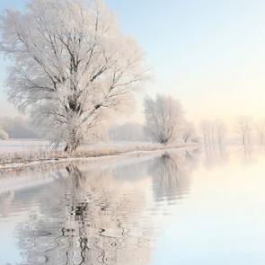 Зима 01364