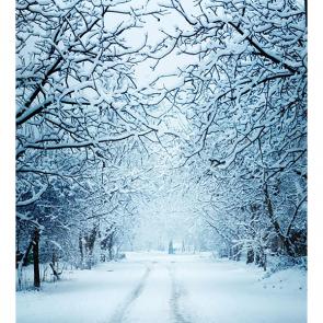 Зима 01412