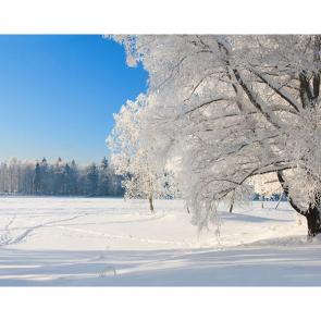 Зима 01415