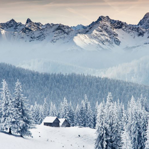 Зима 07232