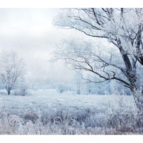 Зима 08436