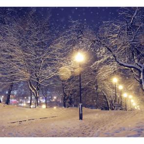 Зима 10622