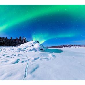 Зима 11154