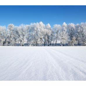 Зима 11396