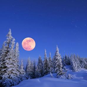 Зима 11411