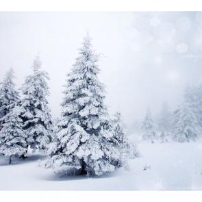 Зима 11433