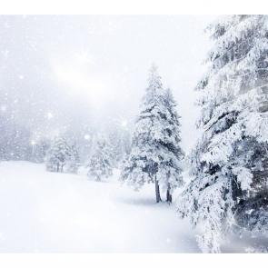 Зима 11434