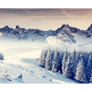 Зима 11435