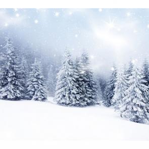 Зима 11446