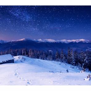 Зима 11486
