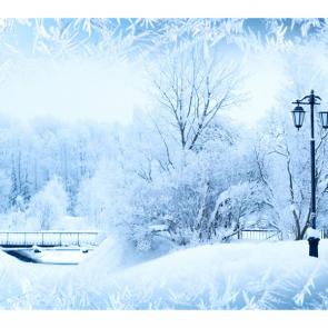 Зима 11619