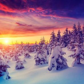 Зима 11628