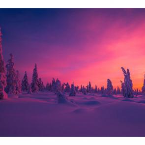 Зима 11764