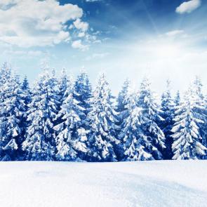 Зима 12810