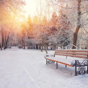Зима 13896