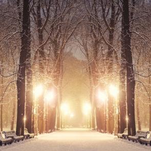 Зима 14308