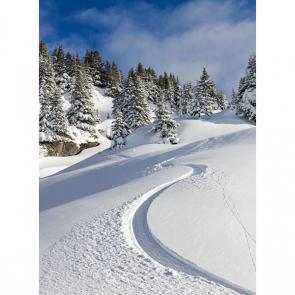 Зима 16148