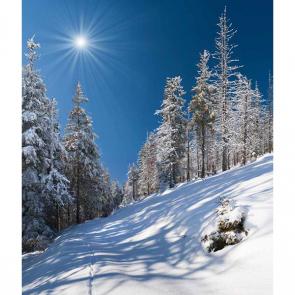 Зима 16326