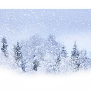 Зима 16327