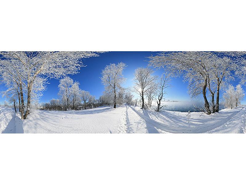 Зимний Пейзаж 1681